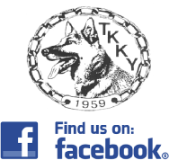 fb-logolinkkiin